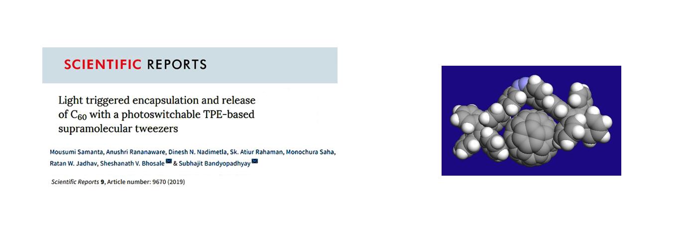 Scientific Reports. 9(1); 2019; ArticleID_9670